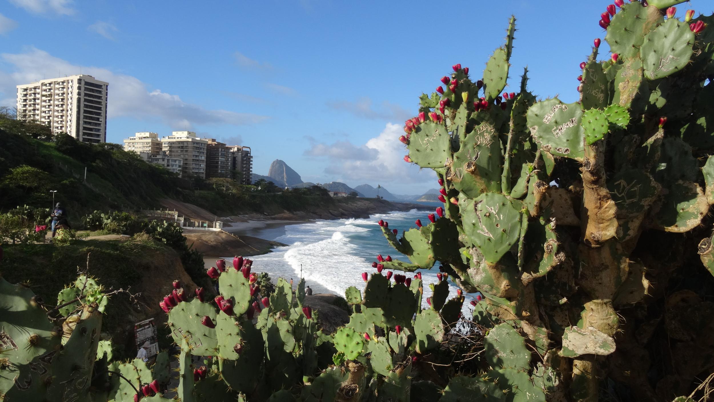 13. View between beaches