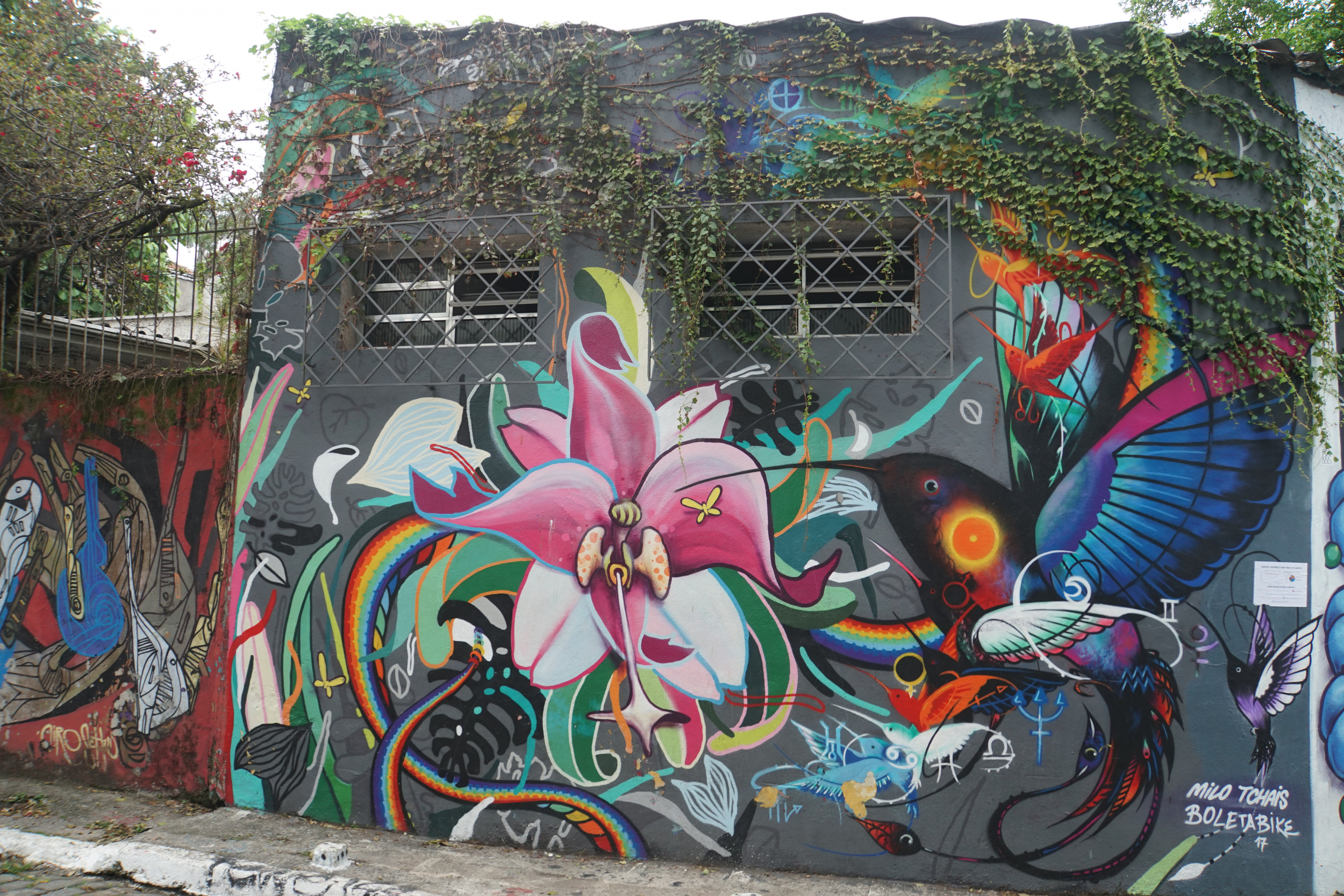 41. Wall Art Sao Paulo