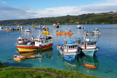 15.-Fishing-fleet-at-Delcahue