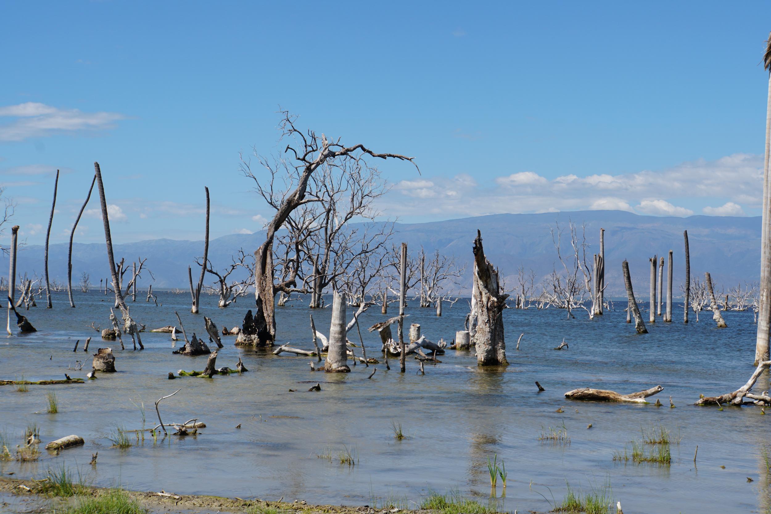60. Lago Enriquillo