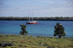 18. Encantada, our ride in the Galapagos