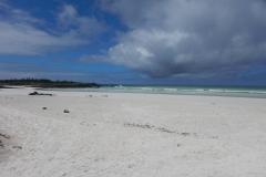 9. Beach at Tortuga Bay