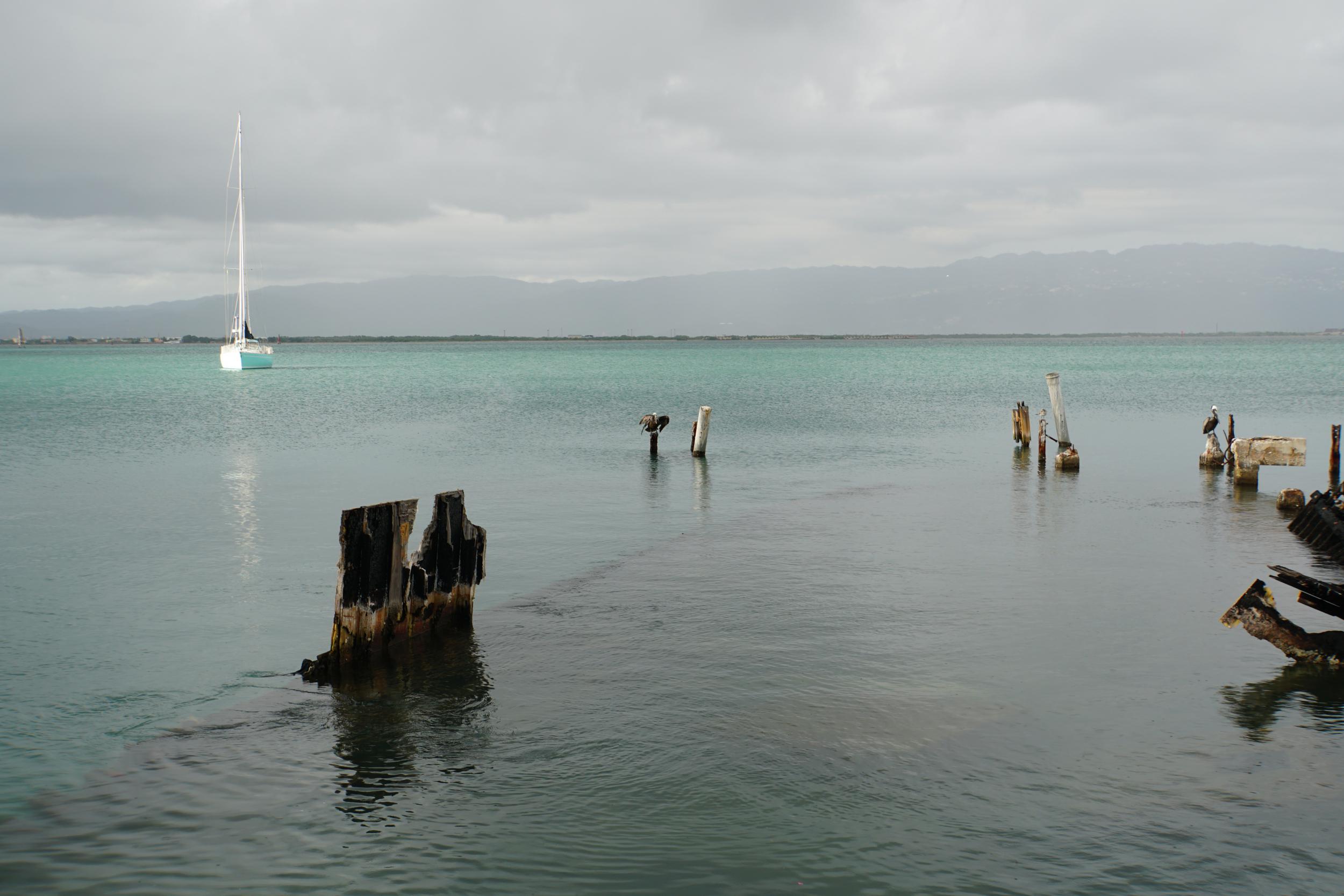 35. Pazzo off Port Royal