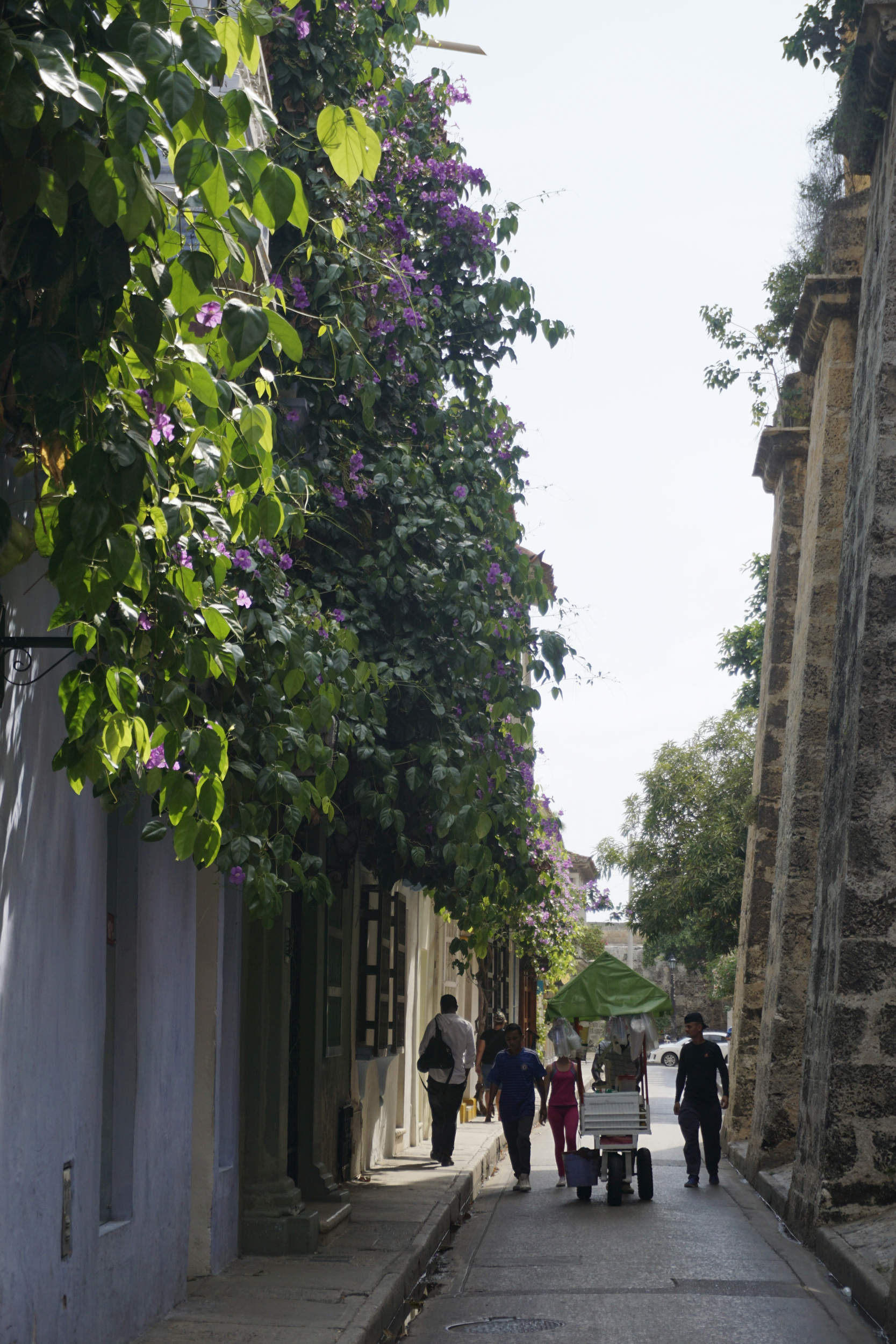 4. the streets of Cartagena