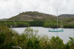 13. Indian Creek, Antigua