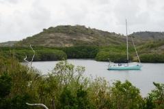 13. Indian Creek, Antigua