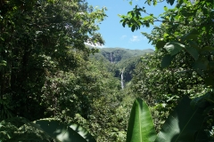 19. Chutes de Carbet, Guadeloupe Start of our hike