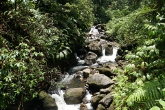 20. HIking along the Carbet River