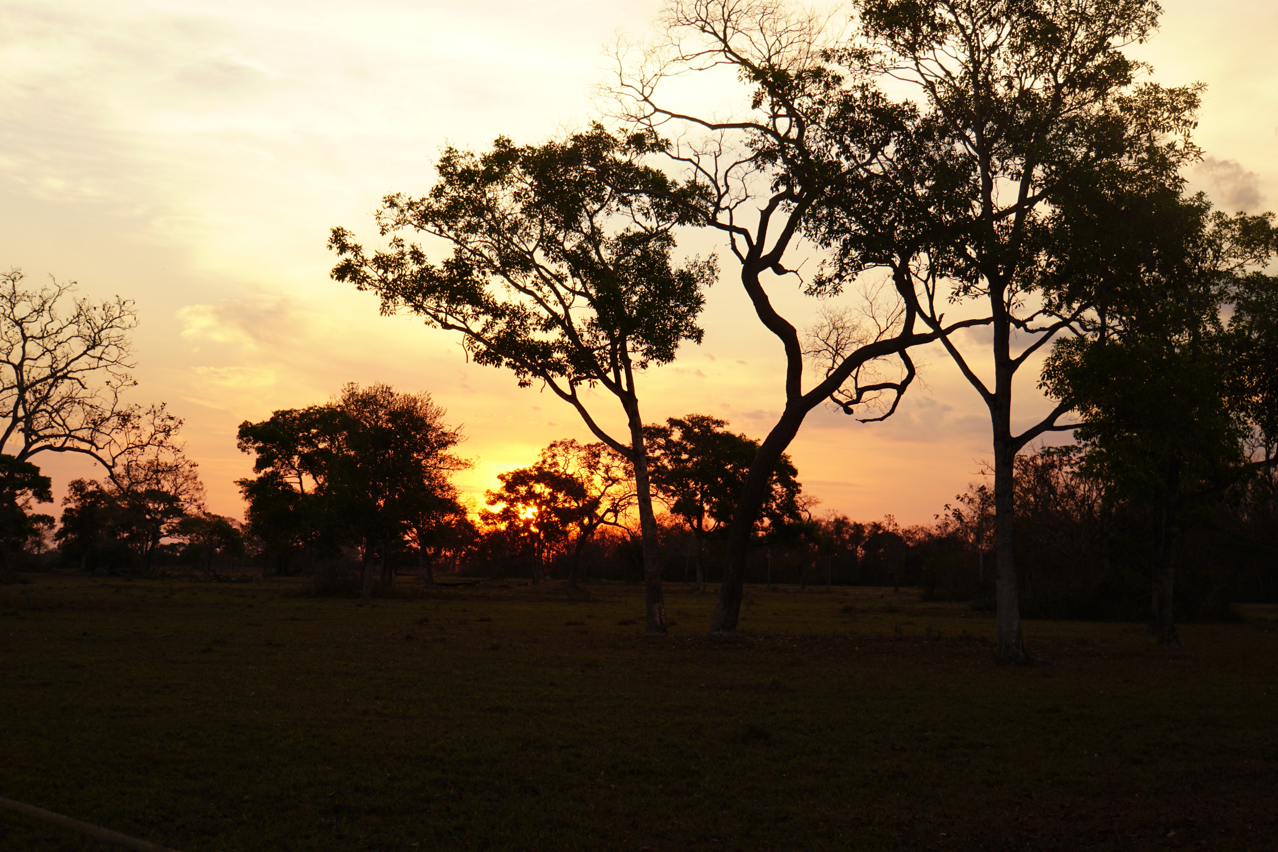 35. Sunset in the Pantanal