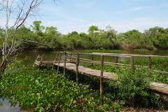 25. Dock on river
