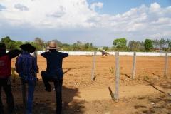 53. Rodeo in Brazil