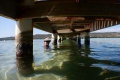 46. Floating under docks at Gilligans Island