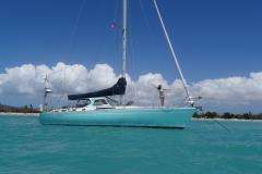 66. Chloe and Pazzo, Vieques Island