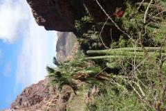 15. HIke through Nacapule Canyon