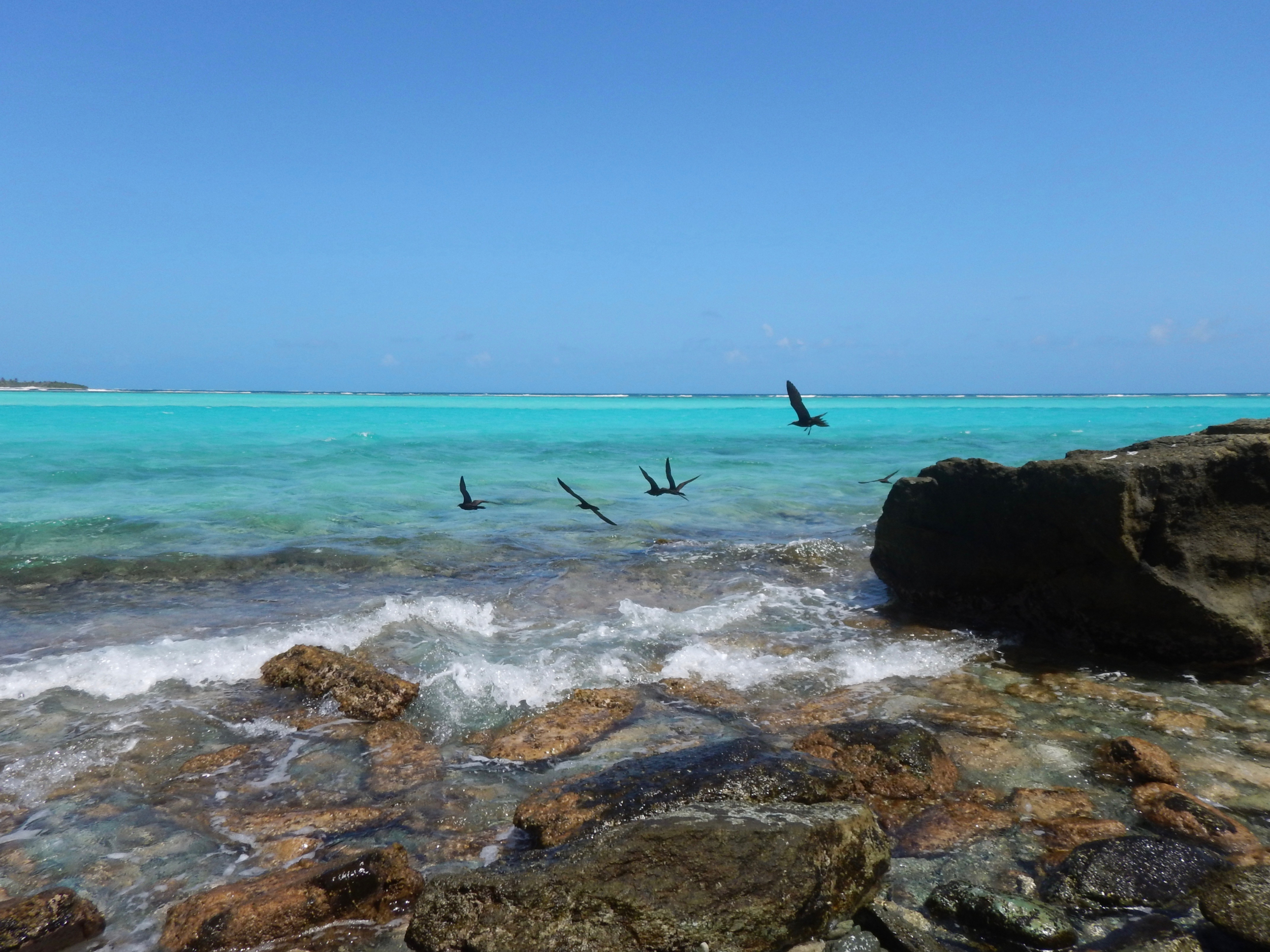 19. Jamesby Idland, Tobago Cays