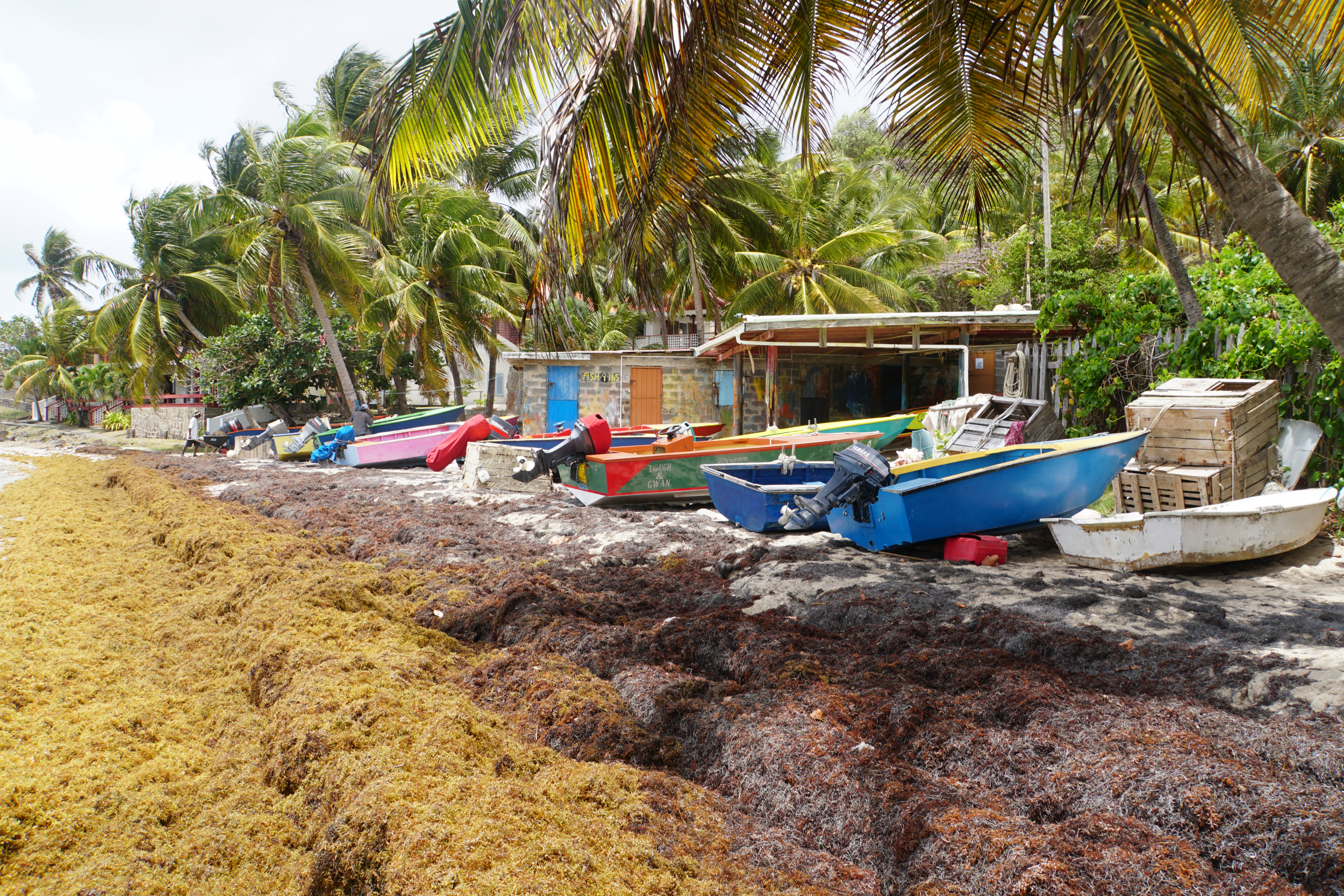 6. Boats on windward side of Bequia