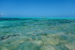 23. Beautiful water of Tobago Cays