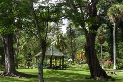 29. Botanical Gardens, Kingstown, St Vincent