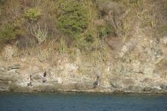 9. Canuuan Island